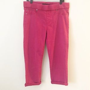 LIVERPOOL JEANS THE CAPRI PINK PANTS SZ 12 / 31